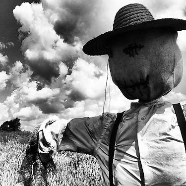 'Banshee' - Scarecrow