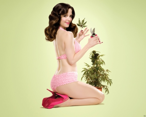 Mary-Louise Parker stars in Showtime's 'Weeds'.