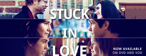 'Stuck in Love' DVD Banner
